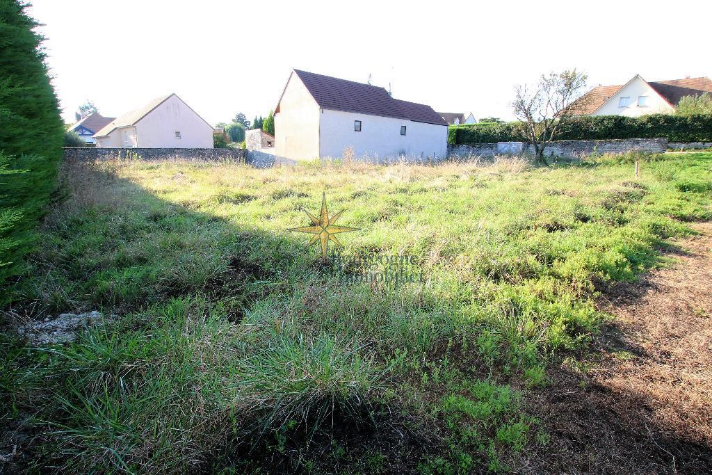 TERRAIN - DRACY LE FORT - 145 000 €